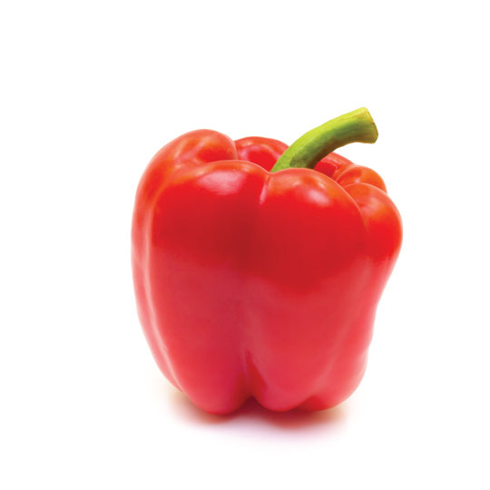 Pepper - Red Bell Image