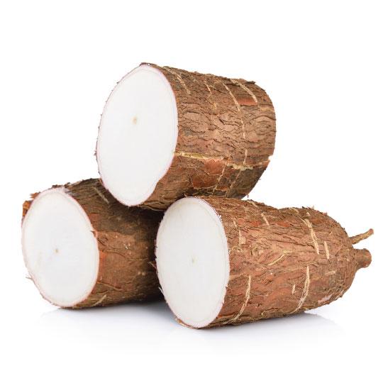 Cassava Image