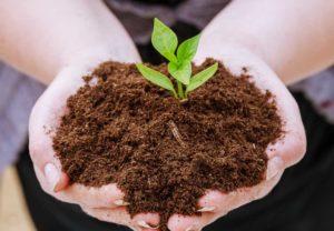 Soil Sampling for Sustainability