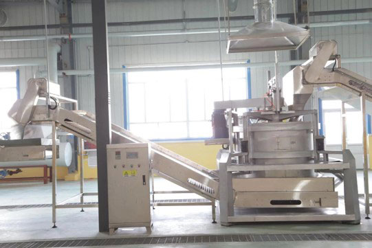 Dicing machine at BCFoods dehydration facility in Hebei, China