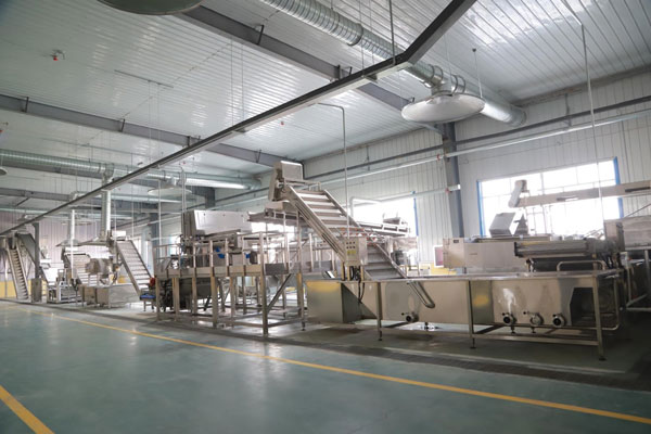 Washing, sorting, grading machine at BCFoods dehydration facility in Hebei, China