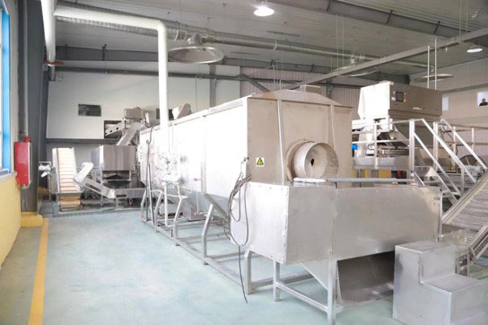 Blanching machine at BCFoods dehydration facility in Hebei, China