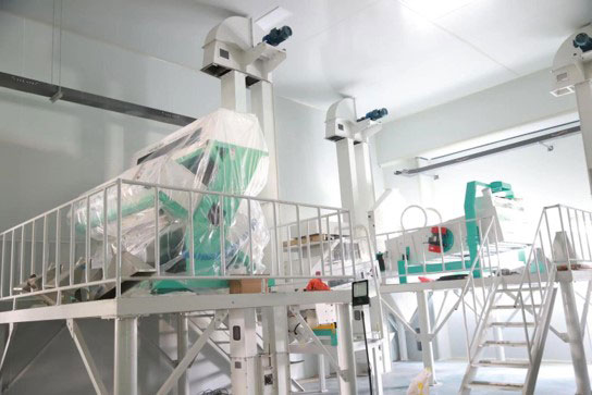 Optical sorter for semi-finished flakes at BCFoods dehydration facility in Hebei, China